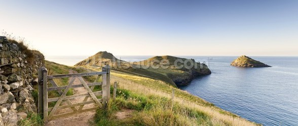 The Rumps wall mural