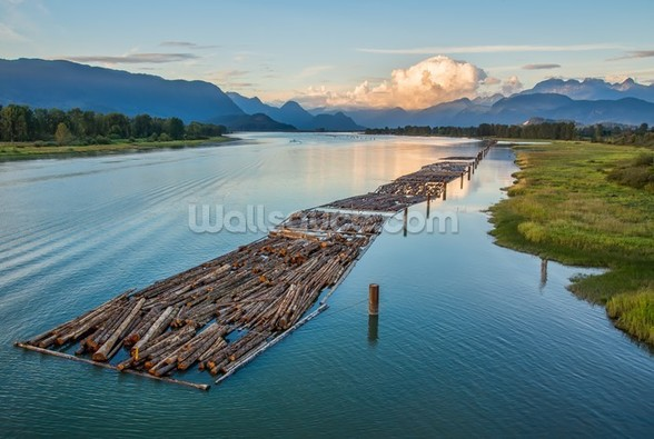 Logs on the River mural wallpaper