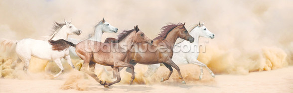 Galloping Herd of Horses wall mural