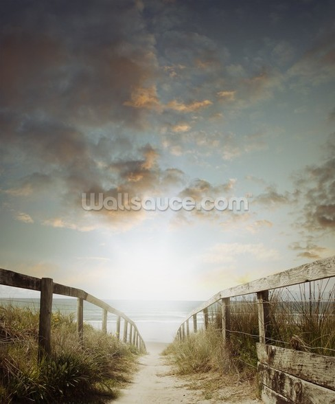Atlantic Coast Beach Walkway wall mural