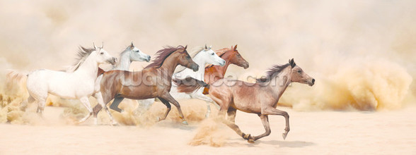 Horses herd running in the sand storm wall mural