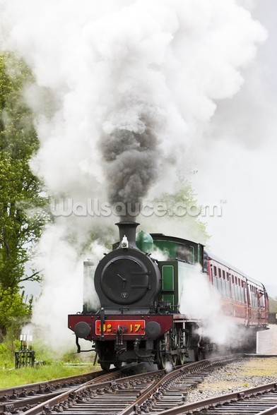 Steam Train in Motion wallpaper mural