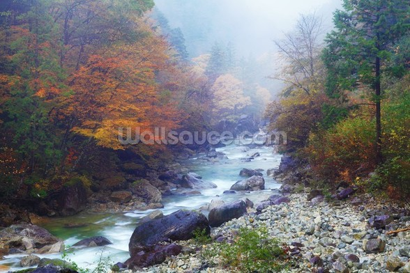 Misty Forest River mural wallpaper