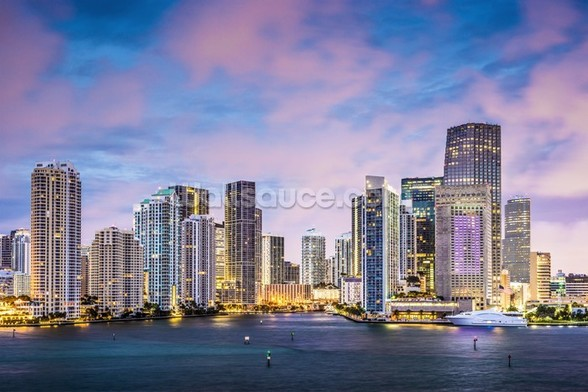 Miami Skyline, Florida wall mural