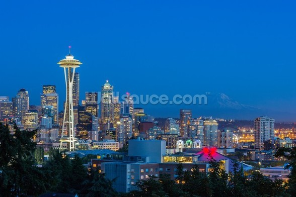 Seattle Skyline and Mount Rainier wall mural