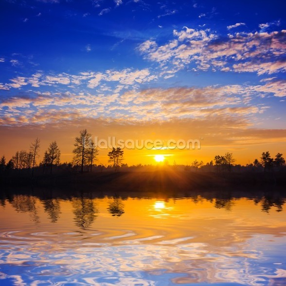 Sunset Reflection wallpaper mural