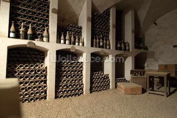 Castle Wine Cellar wall mural