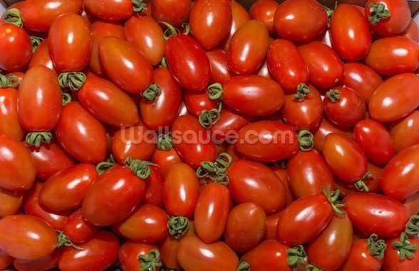 Plumb Tomatoes wallpaper mural