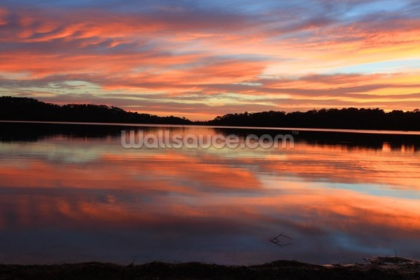 Sunrise Reflections Narrabeen Lakes wall mural