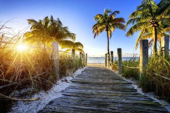 Boardwalk Sunrise mural wallpaper