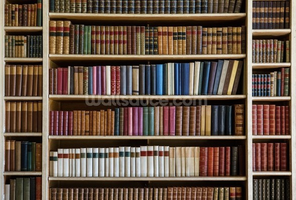 Old Books Bookcase wall mural