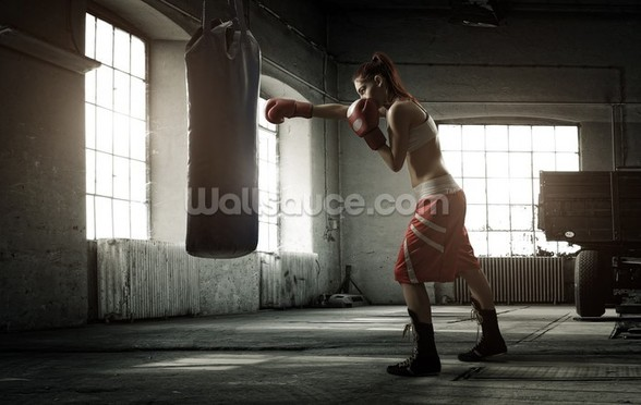 Boxing Workout mural wallpaper
