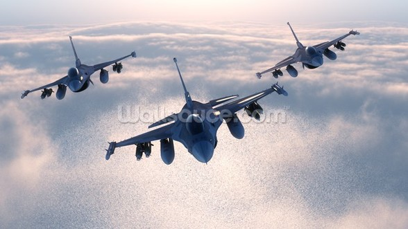 Fighter Jets wall mural