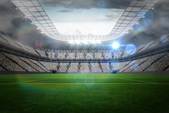 Large football stadium with lights wall mural
