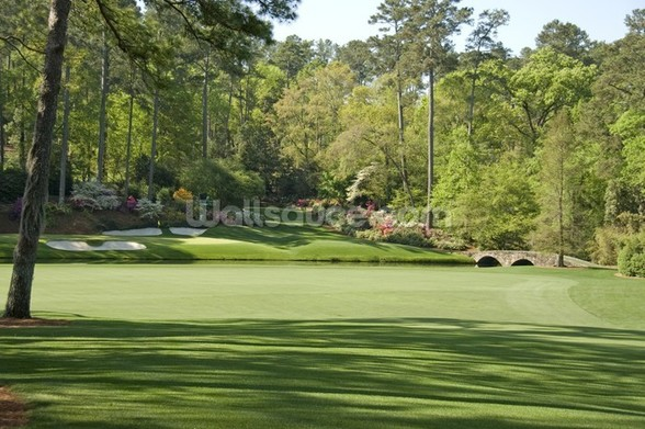 12th Hole at Augusta wall mural