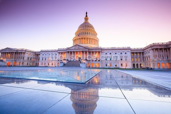 The United States Capitol at Dusk mural wallpaper