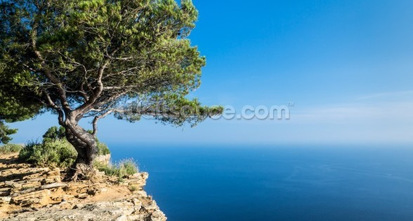 South of France Sea View mural wallpaper