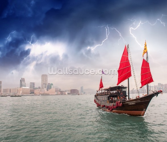 Hong Kong Harbour Boat wall mural