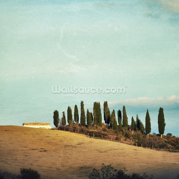 Tuscany Rural Landscape wall mural