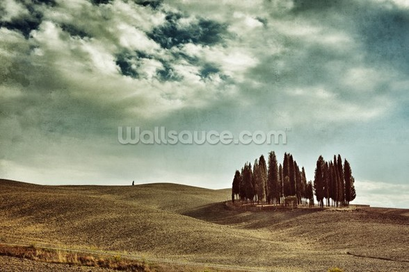 Tuscan rural landscape wall mural
