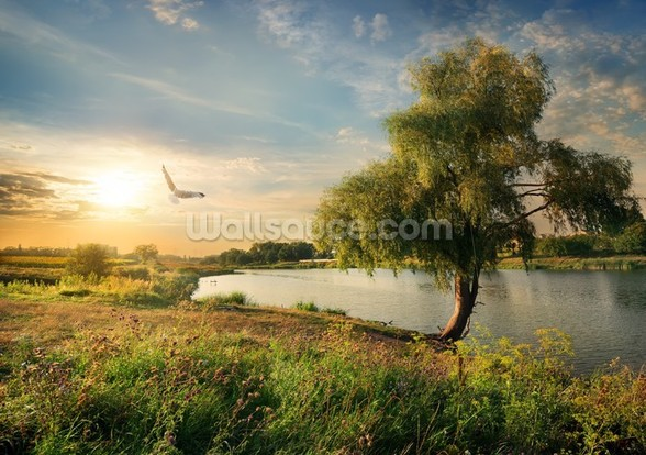 Summer River Scene wall mural