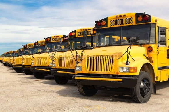 School Buses mural wallpaper