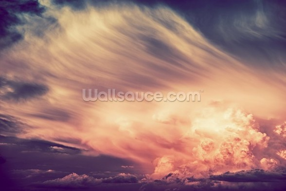 Scenic Sunset Storm wall mural