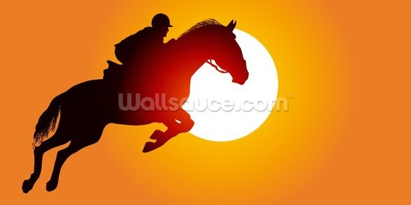 Sunset Jumping wall mural