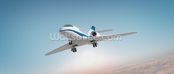 Business Jet wall mural