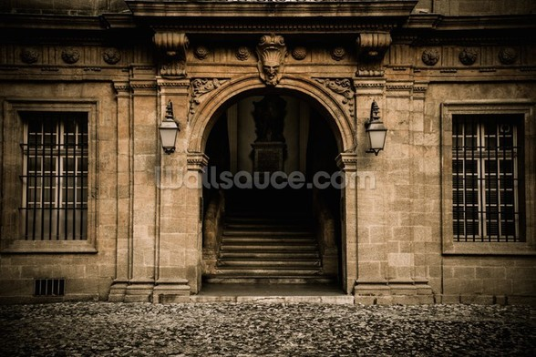 Stone Facade and Doorway wall mural