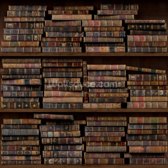 Horizontal Books mural wallpaper