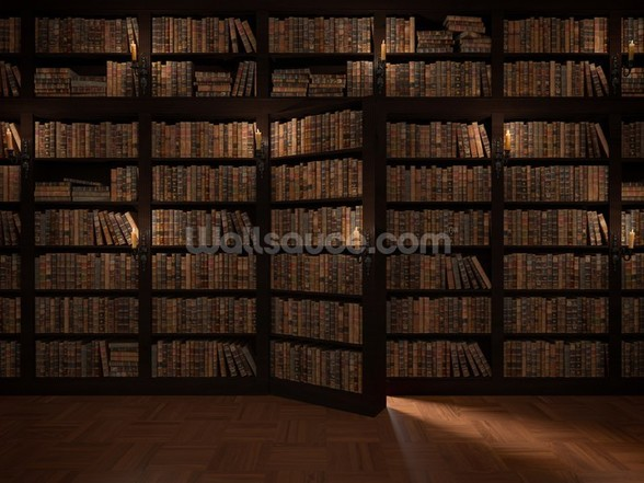 Secret Bookcase Door wall mural