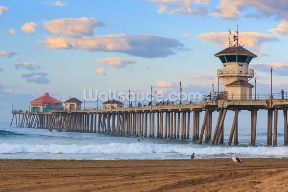 Huntington Beach Pier wall mural