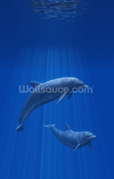 Dolphins Undersea mural wallpaper