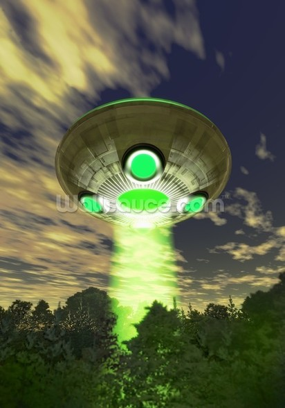 UFO over trees wall mural