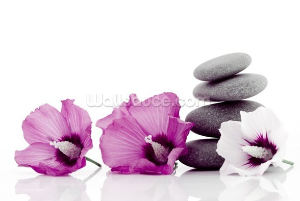 Pebble with Hibiscus Flower wall mural