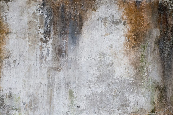 Aged Concrete wall mural