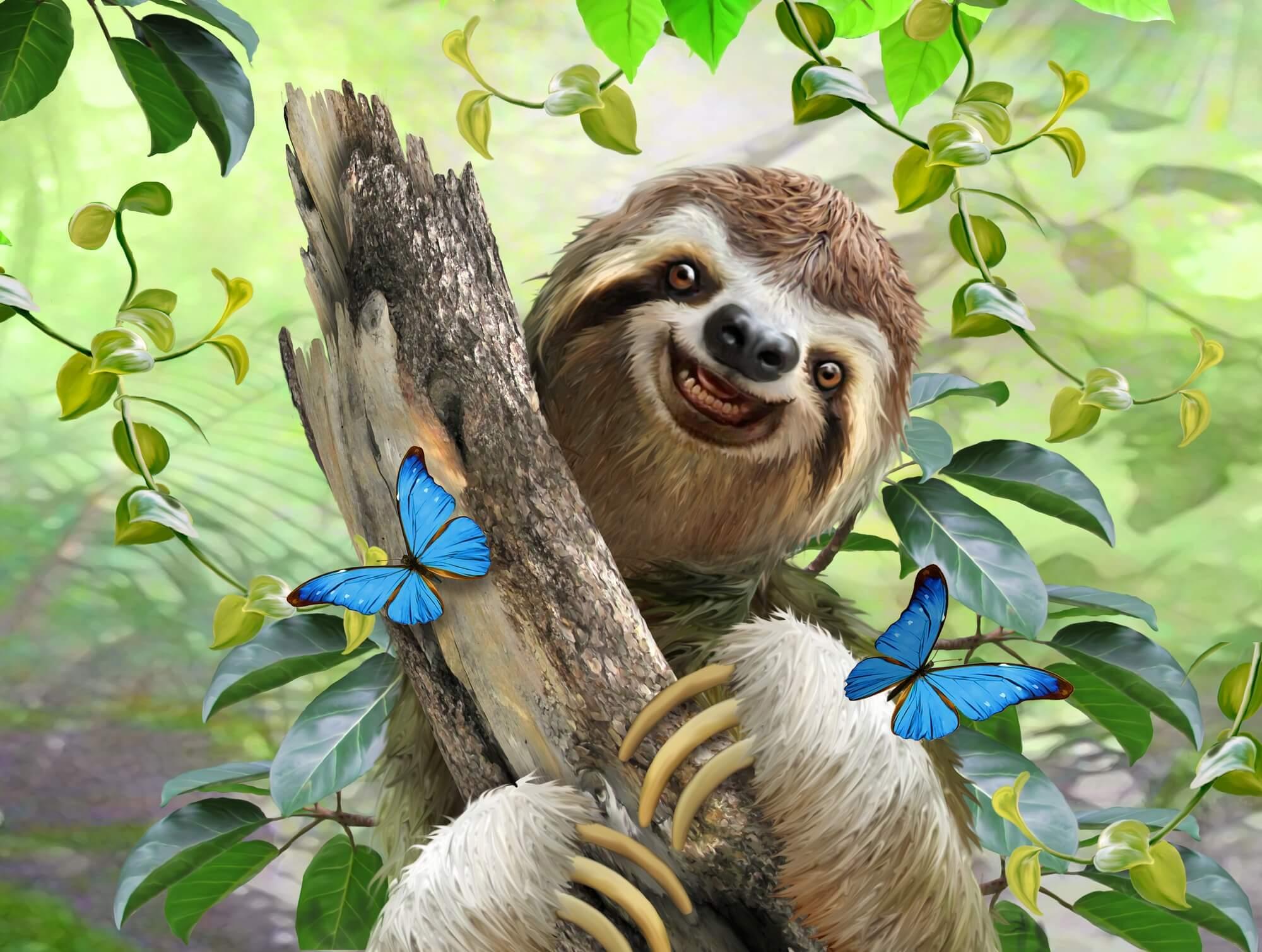 Howard robinson wall murals howard robinson wallpaper sloth selfie wall mural amipublicfo Image collections