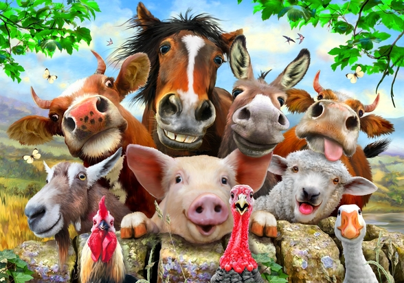 Farm Selfie wallpaper mural