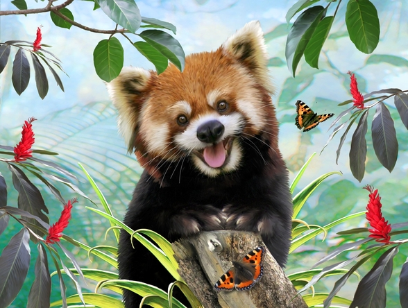 Lesser Red Panda Selfie wallpaper mural