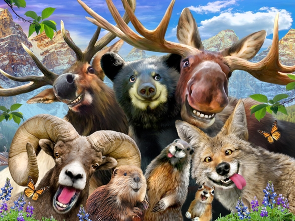 Rocky Mountain Selfie wall mural