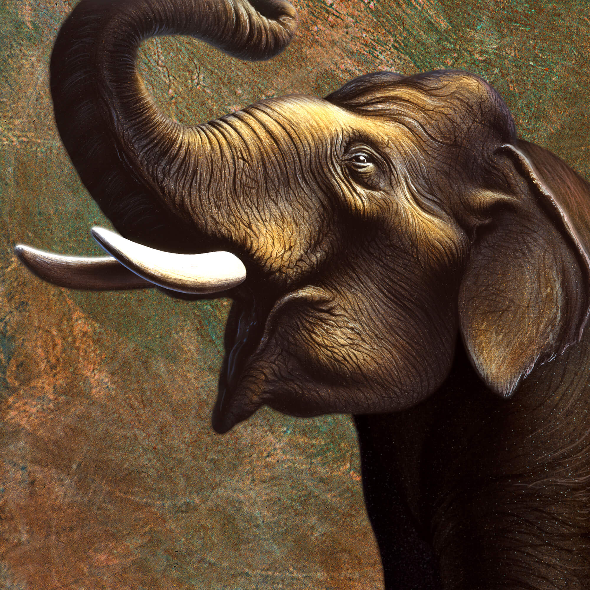 Indian elephant wall mural indian elephant wallpaper for Elephant wall mural