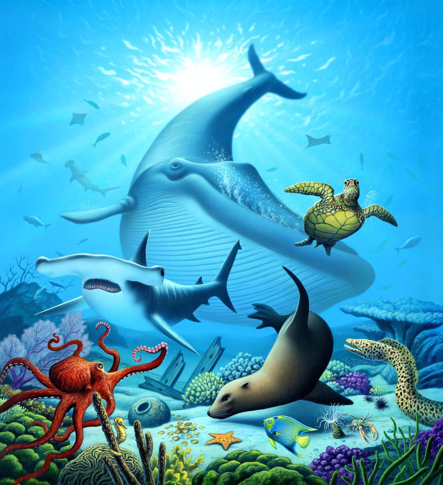 Ocean Wall Murals Ocean Life Wall Mural Amp Ocean Life Wallpaper Wallsauce Uk