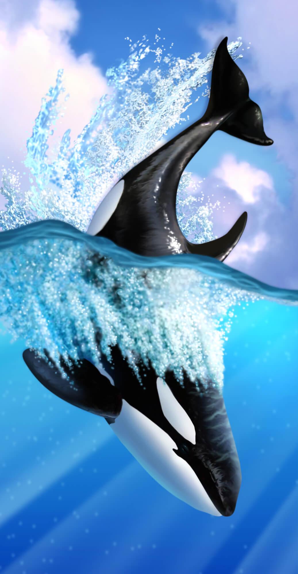 Orca Wall Mural Wallpaper