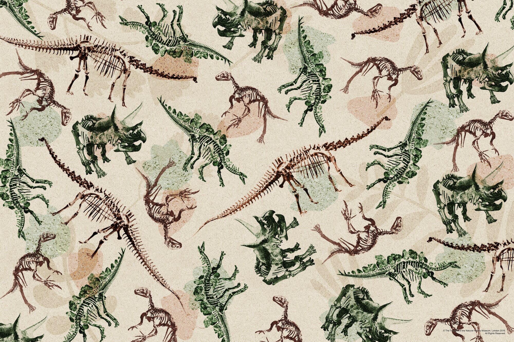Dinosaur Skeleton Montage wallpaper mural