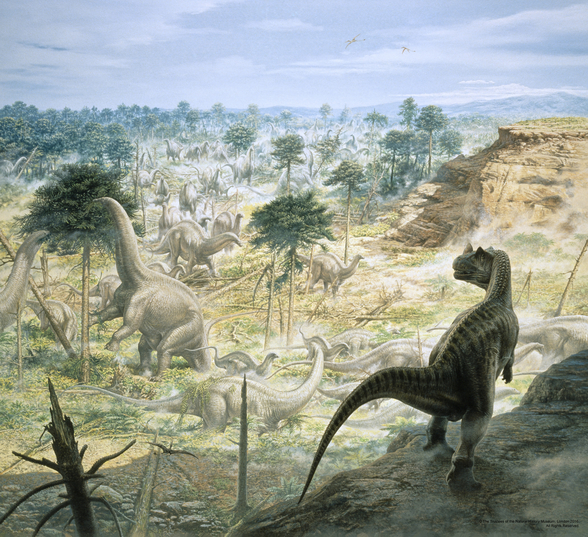 Ceratosaurus and Apatosaurus Herd wall mural
