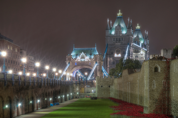 Remembrance Poppies Flood the Tower of London Moat mural wallpaper