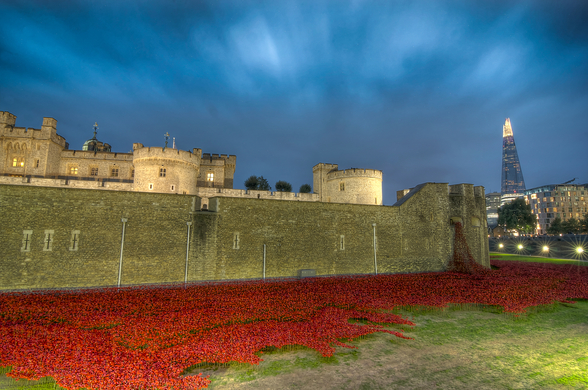 Tower of London Sea of Poppies wall mural