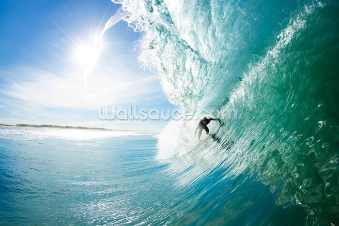 surf wall mural amp surfing wallpaper mural wallsauce live to surf wall mural pbteen
