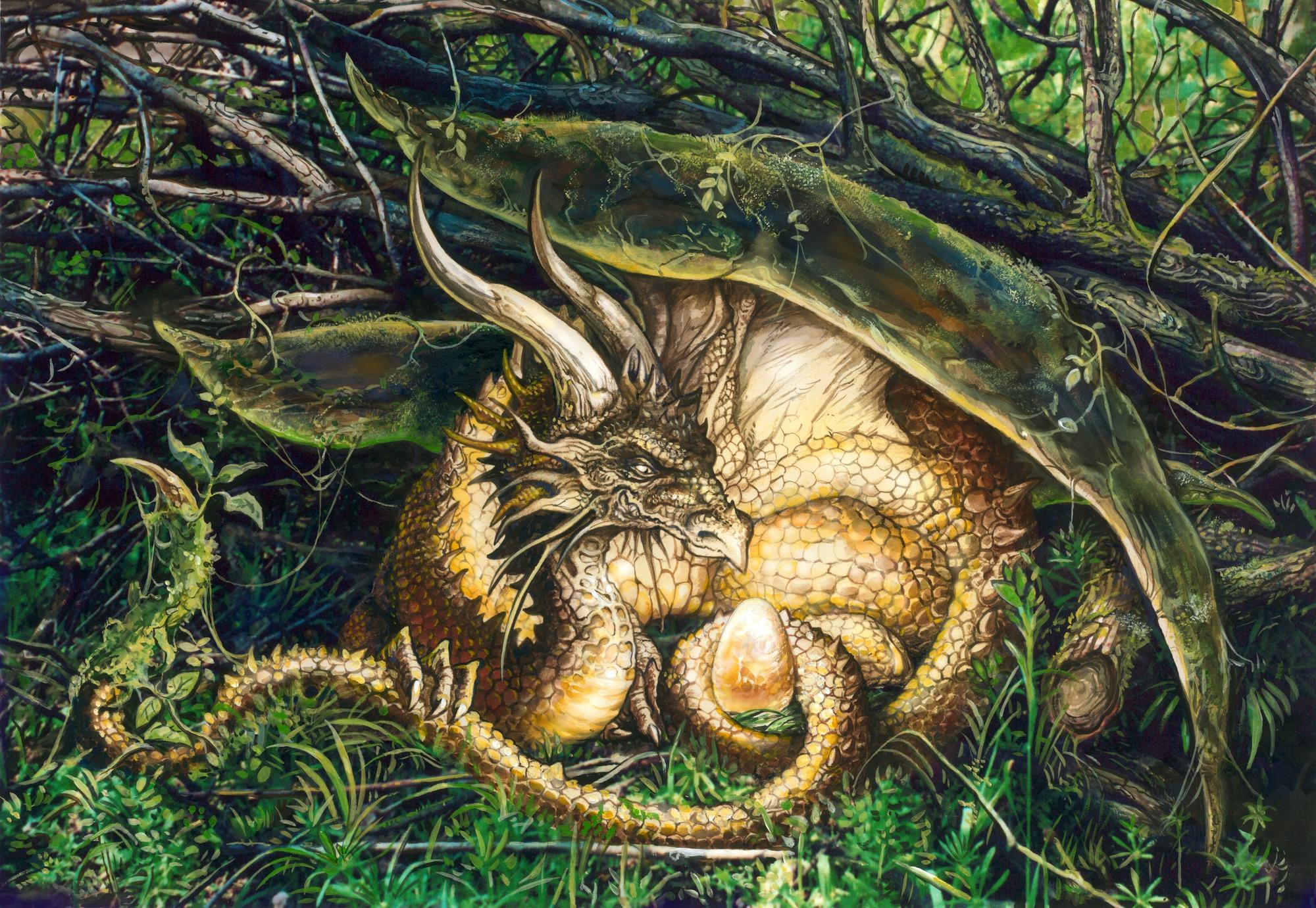Dragons nest wall mural wallpaper wallsauce usa for Dragon mural wallpaper